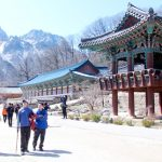 Lời khuyên hữu ích cho người lần đầu du lịch Hàn Quốc